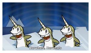 2015-03-03-narwhals3.jpg