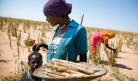 2015-03-06-1425678863-9423534-Africanwomenentrepreneurs2web.jpg