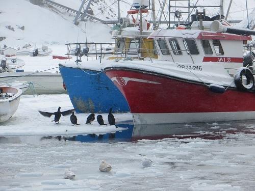 2015-03-09-1425937540-1758351-Greenland261.JPG