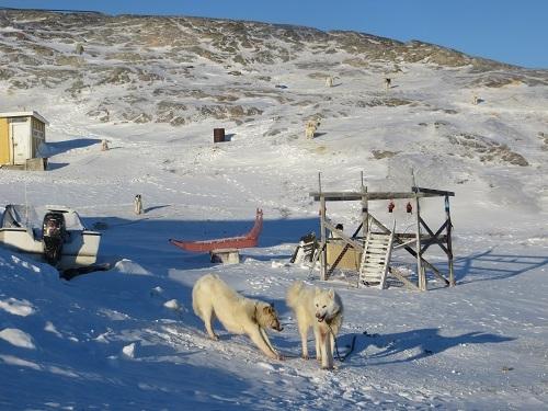 2015-03-11-1426107963-7873130-Greenland368.JPG