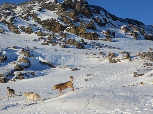 2015-03-11-1426108909-331005-Greenland376.JPG