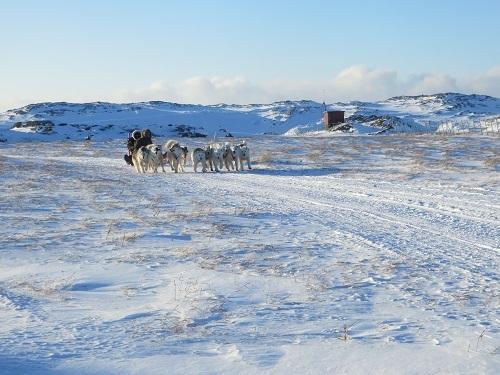 2015-03-11-1426110558-2770558-Greenland574.JPG