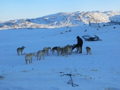 2015-03-11-1426111282-1009944-Greenland569.JPG