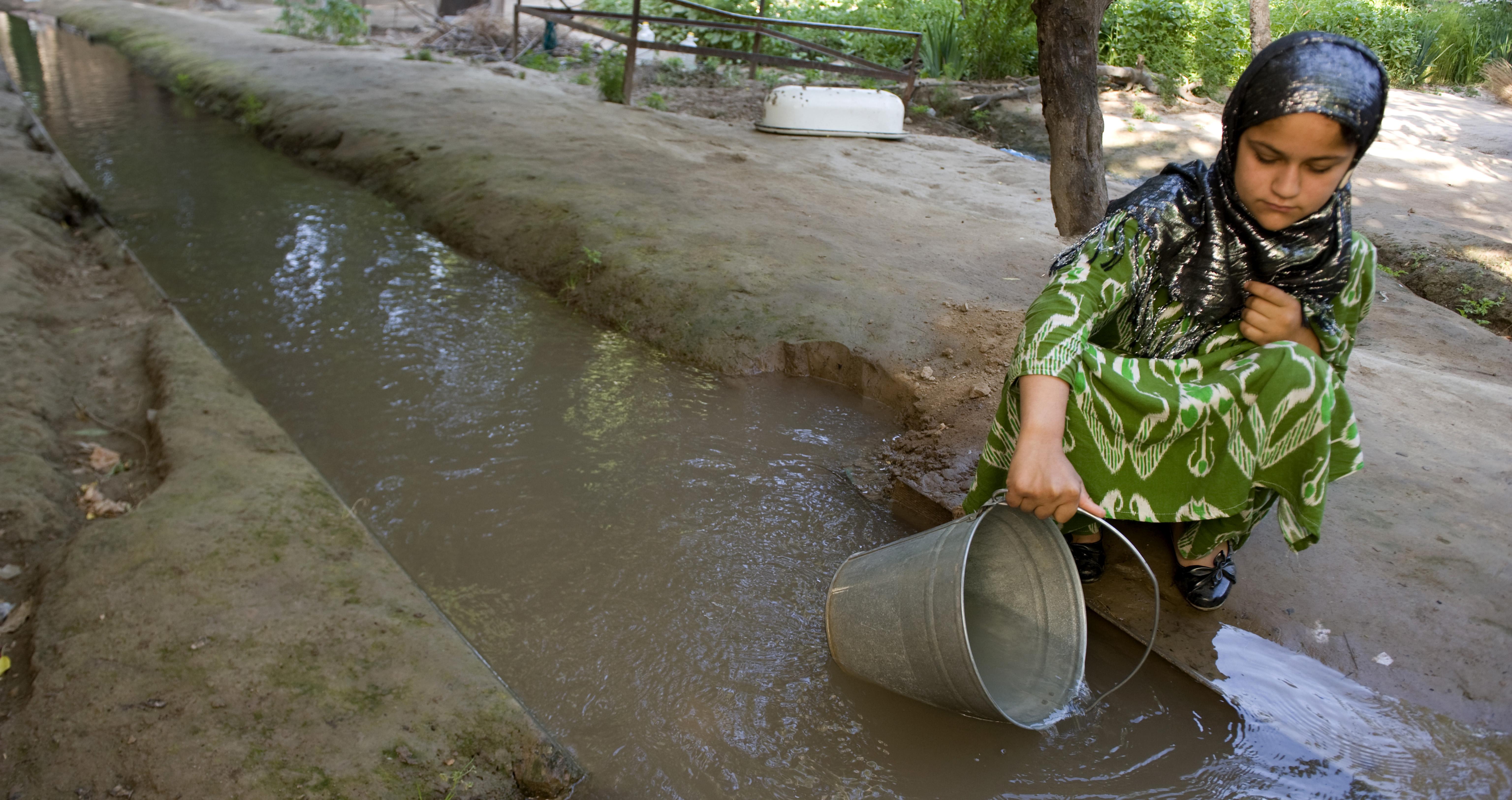 Сабака йибат девчка таджикистан 4 фотография