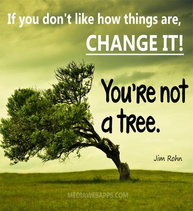 2015-03-20-1426890062-4252399-Tree.jpg
