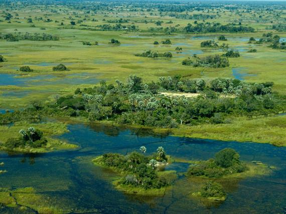 2015-03-23-1427143817-7774082-255084e85481a91bb7819f605_OkavangodeltaBotswana.jpg