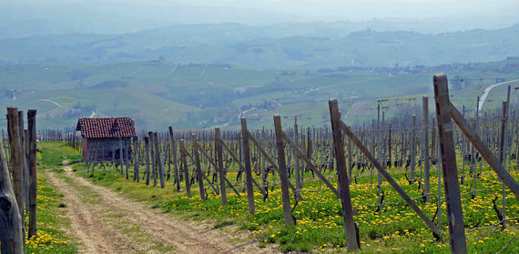 2015-03-24-1427200933-8063926-Piedmont3.jpg