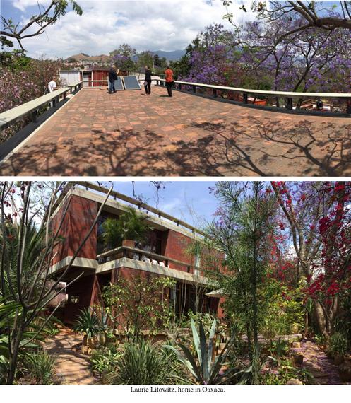 2015-03-24-1427238651-3326747-HP_5_Oaxaca_Laurie_Litowitz_Home.jpg