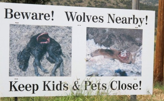 2015-03-25-1427249525-6372693-Beware_of_Wolves.jpg