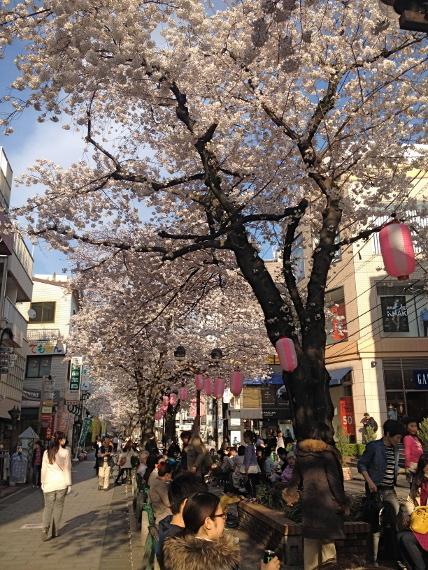 2015-03-30-1427723563-7361290-Jiyugaoka.JPG