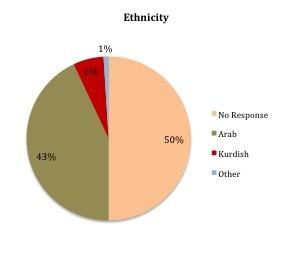 2015-04-07-1428379325-8638949-Ethnicity.jpg