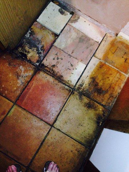 2015-04-07-1428419358-8688128-kitchenfloor1.jpg