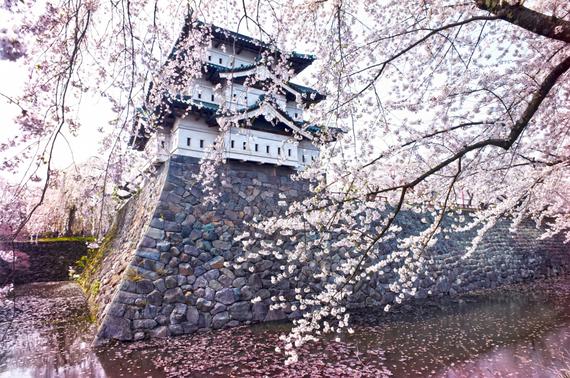 2015-04-13-1428933552-1785125-blossoms_1.jpeg