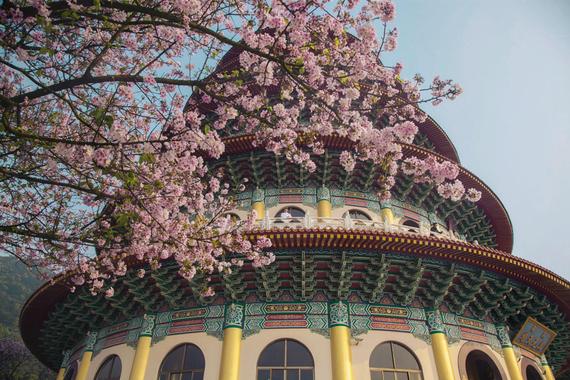 2015-04-13-1428935210-4755548-blossoms_31.jpeg