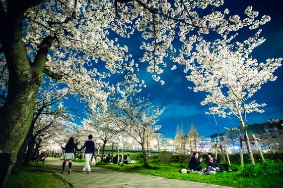2015-04-13-1428935263-3478818-blossoms_33.jpeg