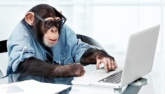2015-04-16-1429201670-7302704-Chimp_at_computer.jpg