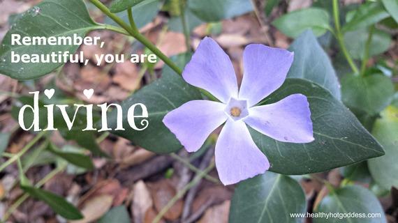 2015-04-21-1429581278-1615569-divineflower1.jpg