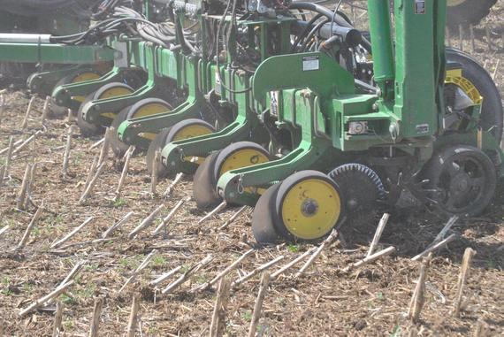 2015-04-22-1429715523-2796193-planting.jpg