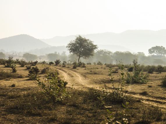 2015-04-23-1429800448-3921316-landscapeRanthambhorehp.jpg