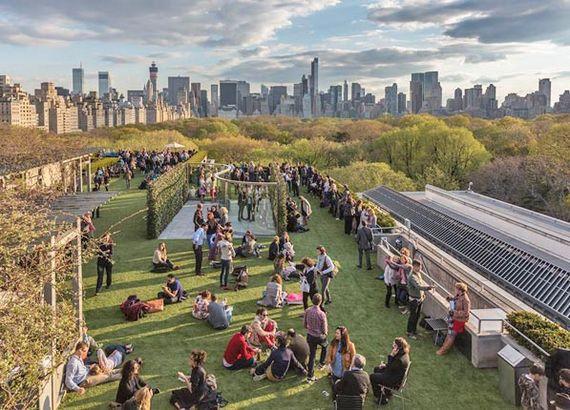 2015-04-28-1430229613-1761009-nyc_rooftops_met_garden.jpg