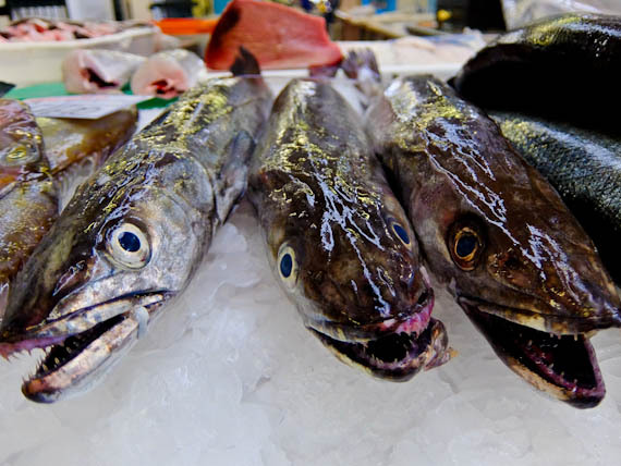 2015-04-30-1430386043-3132714-Blackfish.jpg