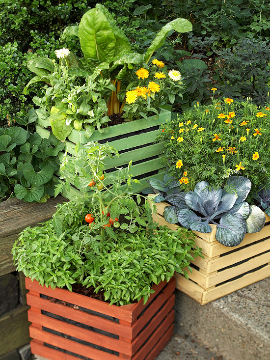 8 ways to reuse old wood crates and pallets huffpost - Soil for container vegetable gardening ...
