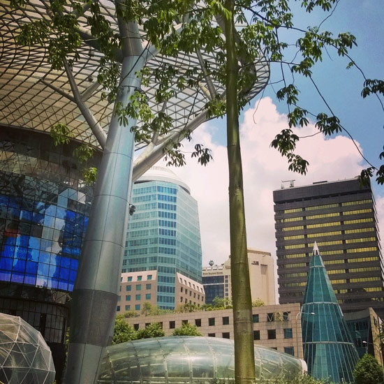 2015-05-04-1430734686-683866-SingaporeOrchardRoad.jpg