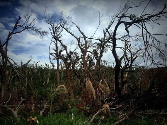 2015-05-06-1430889108-3369859-Vanuatu.JPG