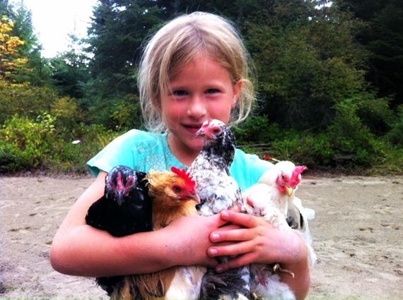 2015-05-06-1430928320-32976-chickens3.jpg
