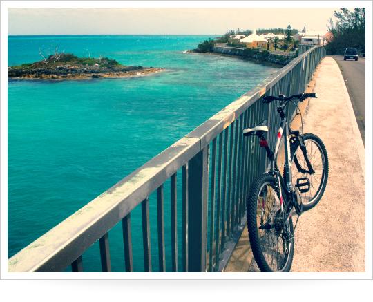 2015-05-06-1430947956-4863047-1mountainbike.jpg
