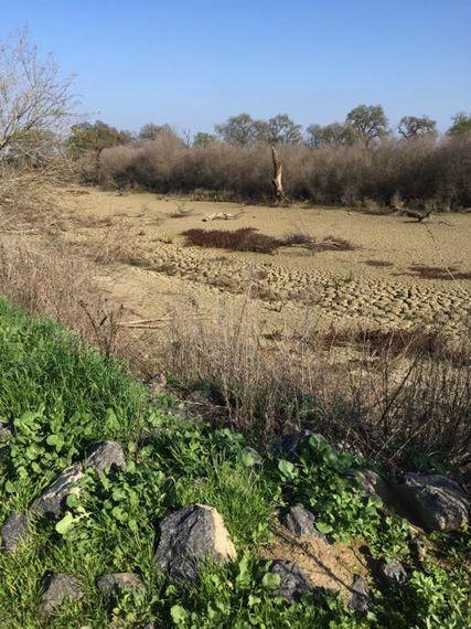 2015-05-11-1431361075-6768475-Drought.jpg