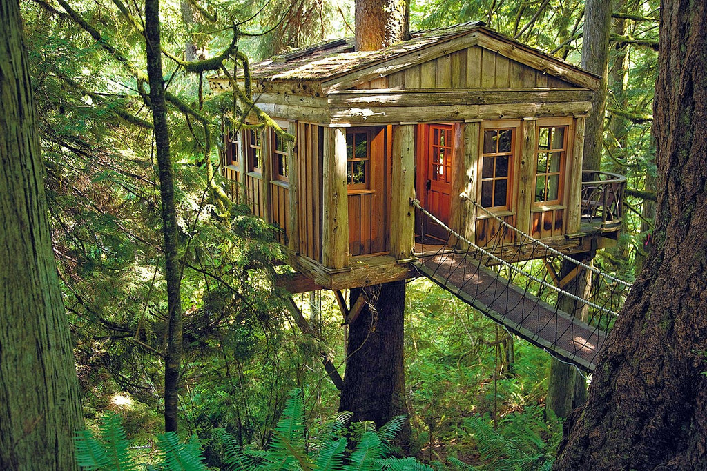 Coolest Treehouse In The World Ideas