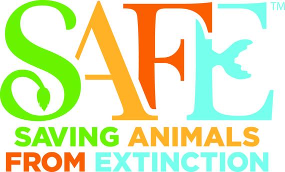 2015-05-15-1431714969-9929830-SAFE_logo.jpg