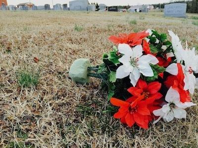 Skip fake flowers this memorial day 5 eco friendly options huffpost 2015 05 19 1432066887 2640103 graveflowersg mightylinksfo