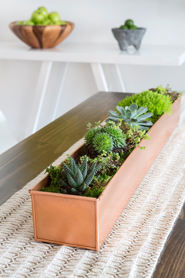 Dining table succulent arrangement in a copper planter by Decor Aid