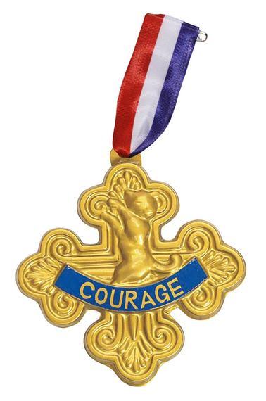 2015-05-20-1432149502-2130369-MedalofCourage.jpg