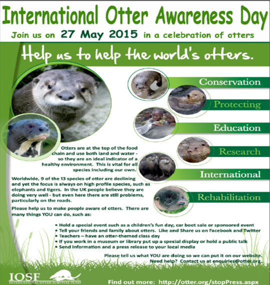 2015-05-20-1432150570-7591037-internationalotterday.png