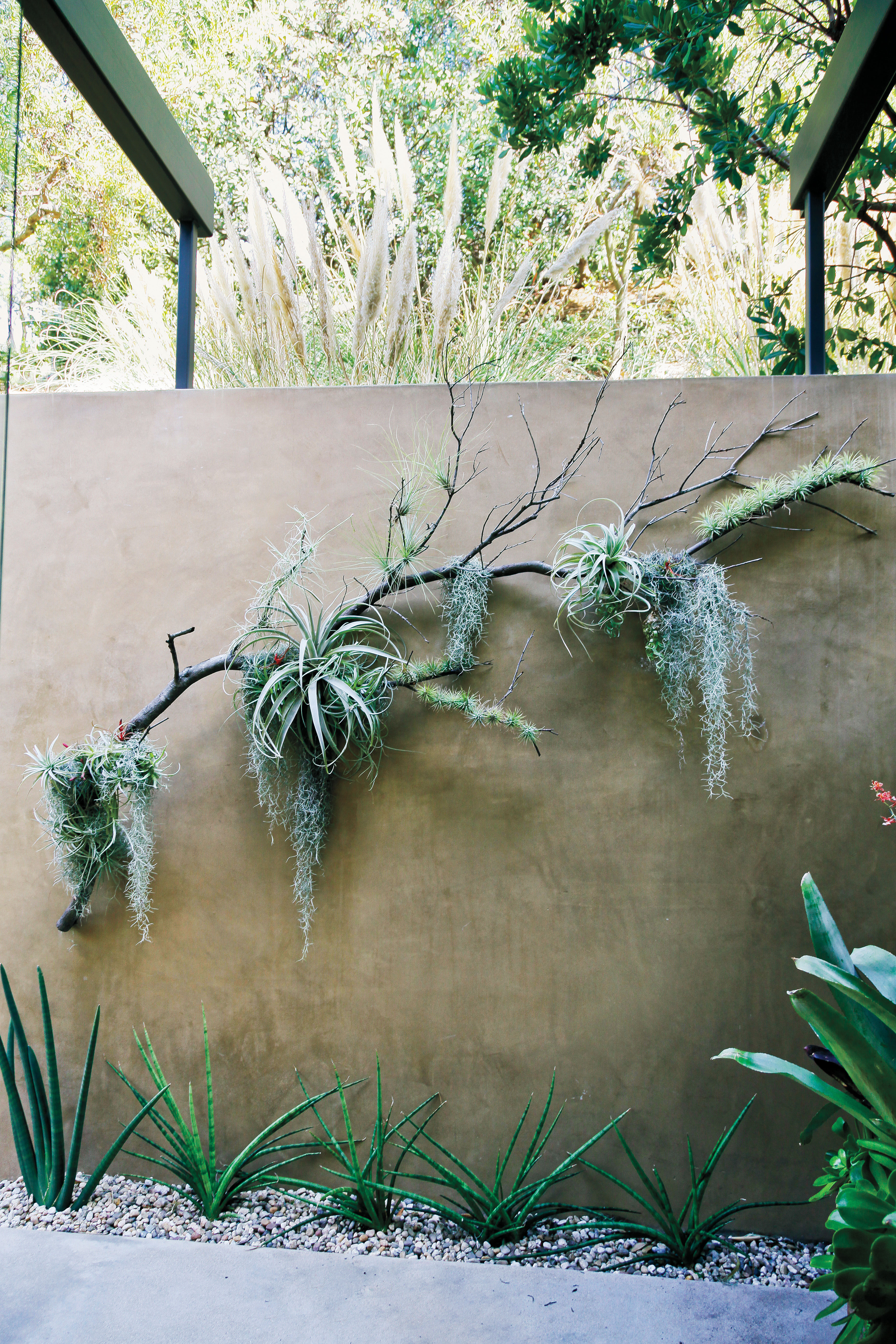 Drought Changing Our Western Garden Styles Huffpost