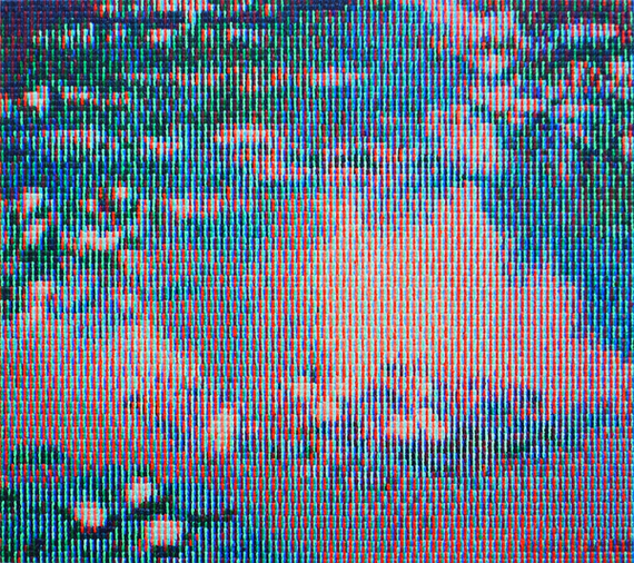 2015-05-28-1432818553-115827-KeisukeKatsukiNympheas19052014.jpg