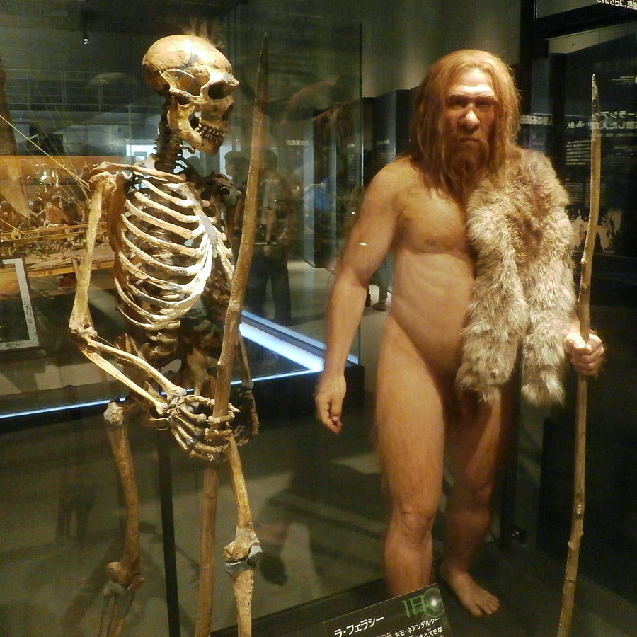 an argumentation on cloning the neanderthal Neanderthal cloning concerns me people used to think that in vitro fertilization was against god, but now you hear very little argument against it.