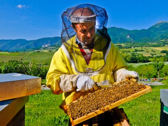 2015-05-31-1433092359-3516523-Beekeeper.jpg