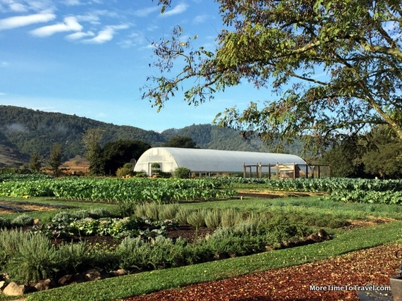 12 Things You Must See And Do In The Napa Valley Huffpost