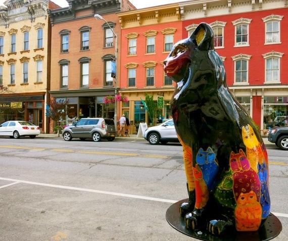 2015-06-04-1433457739-1240619-CatskillNYCats.jpg