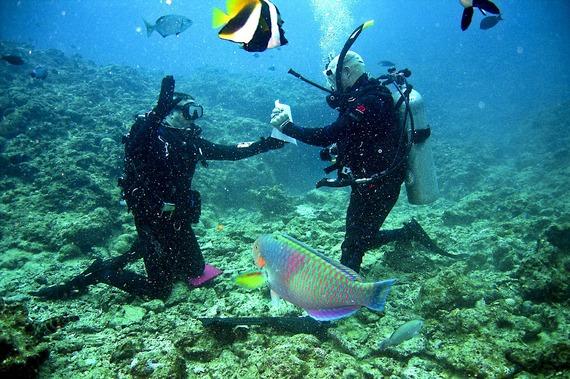 2015-06-05-1433500894-4766140-1.DivingHoliday.jpg
