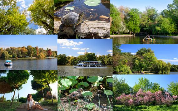 2015-06-07-1433693442-9038819-6.Parks.jpg