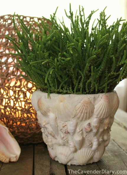 9 Home Decor Crafts Using Goodies From The Beach Huffpost