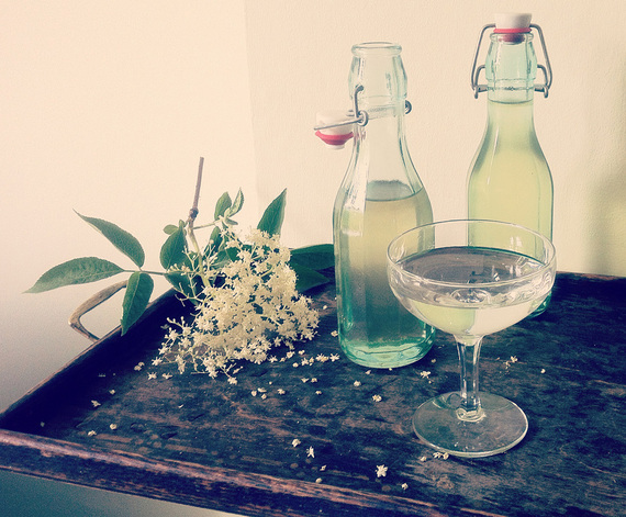 How to Make Elderflower Cordial | Patricia Campbell