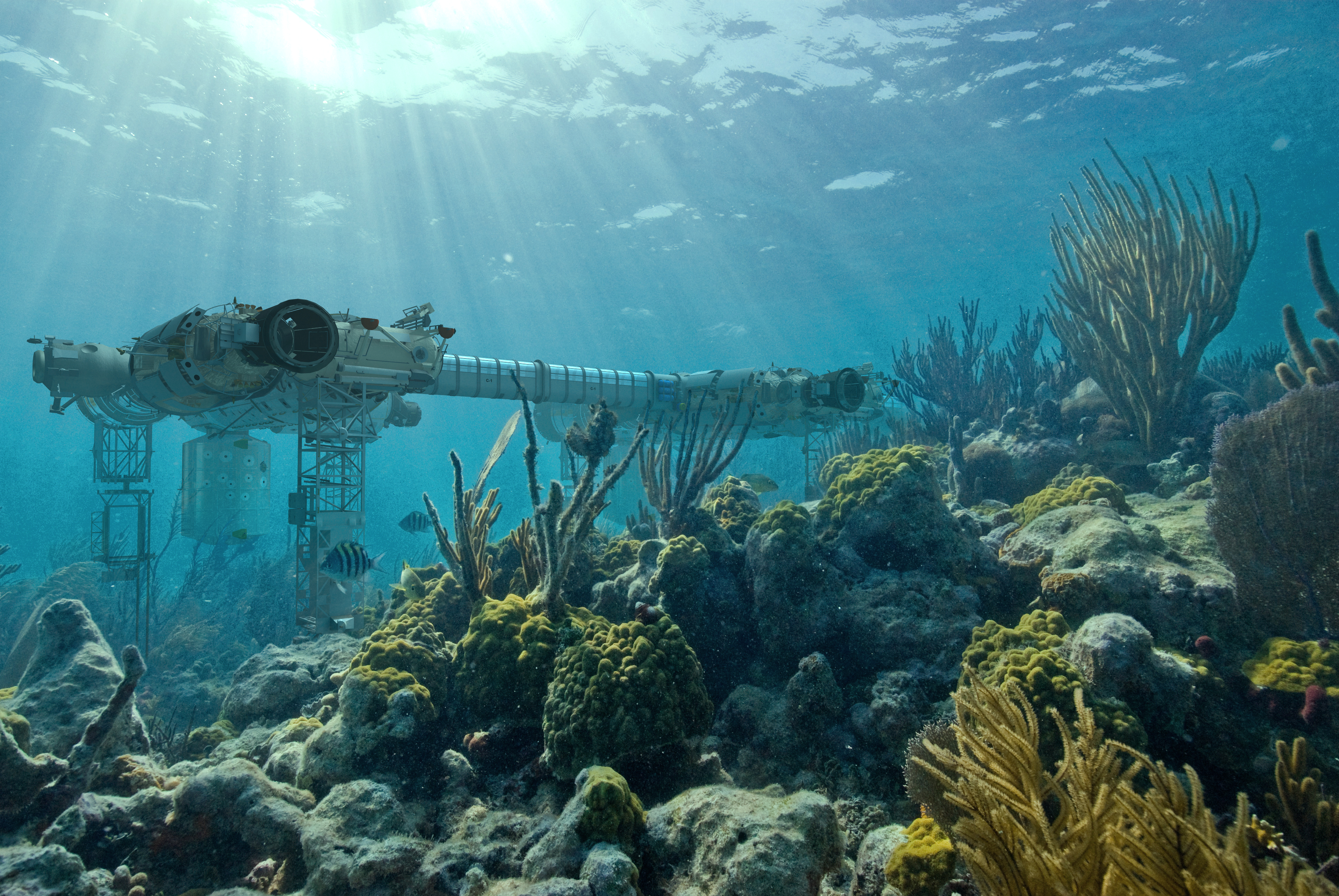 deep ocean Deep-sea (dēp′sē′) adj of, relating to, or taking place in the deeper parts of the sea: deep-sea exploration deep-sea n (modifier) of, found in, or characteristic of the deep parts of the sea: deep-sea fishing deep′-sea′ adj of, pertaining to, or associated with the deeper parts of the sea: deep-sea fishing [1620–30.