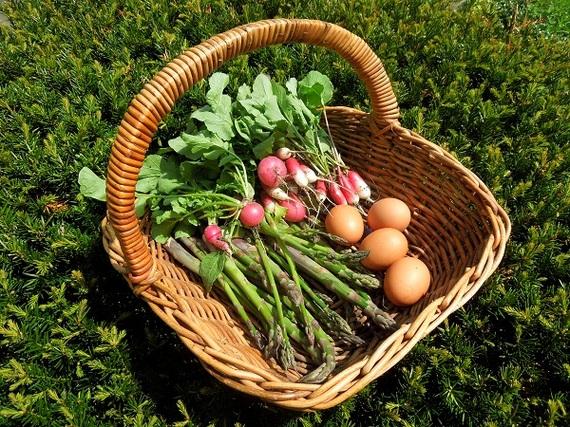 2015-06-15-1434381313-2632147-eggsandasparagusandradishbasket6.jpg