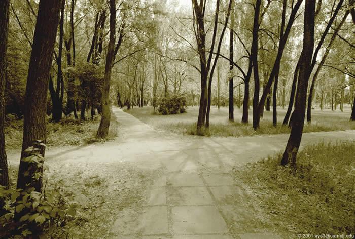 скачать Crossroads через торрент - фото 10